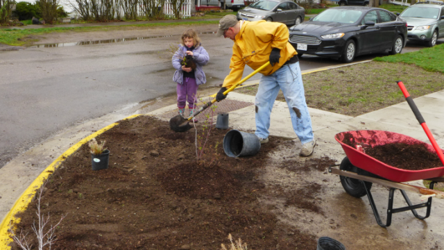 Man and child working on planting