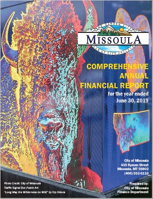 Comprehensive Annual Financial Report - Fiscal Year 2019